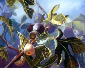 Figs by Joyce Lazzara. Size 16X20