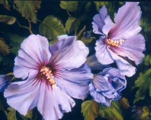 violet mist 14x18