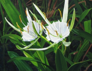 Spider Lilies by Jeanette Chupack - www.jchupackart.com