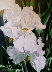 Helen's Iris by Signature Artist Cathy Pearson - Acrylic 28x22