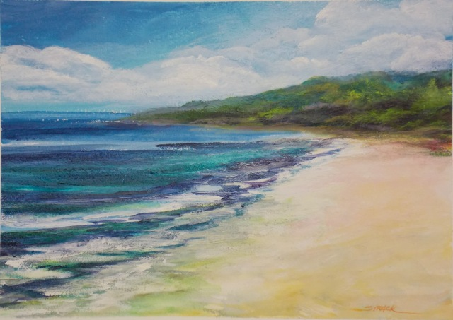 NOAPS Hahnemuhl 7. Beach, acrylic on paper by Annie Strack
