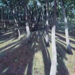 NOAPS Cutter LightAndShadow_60x60_Oil_CollectionOfArtist