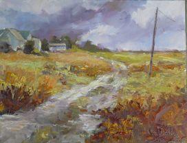 NOAPS Davis stormy weather