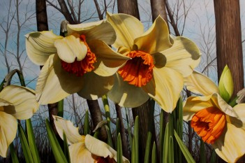 NOAPS DiBenedetto_dance of the daffodils 24x36