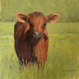 NOAPS Marchant - How Now... (Brown Cow)