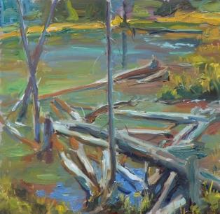 noaps kalwick beaver pond 12x12