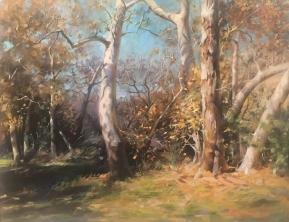NOAPS Wu The Color of the Fall 16x20
