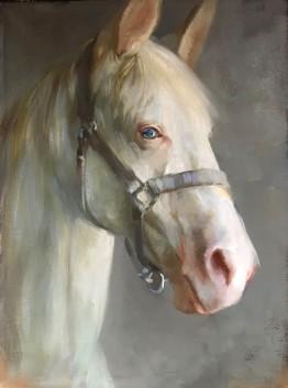NOAPS Galbraith The White Horse