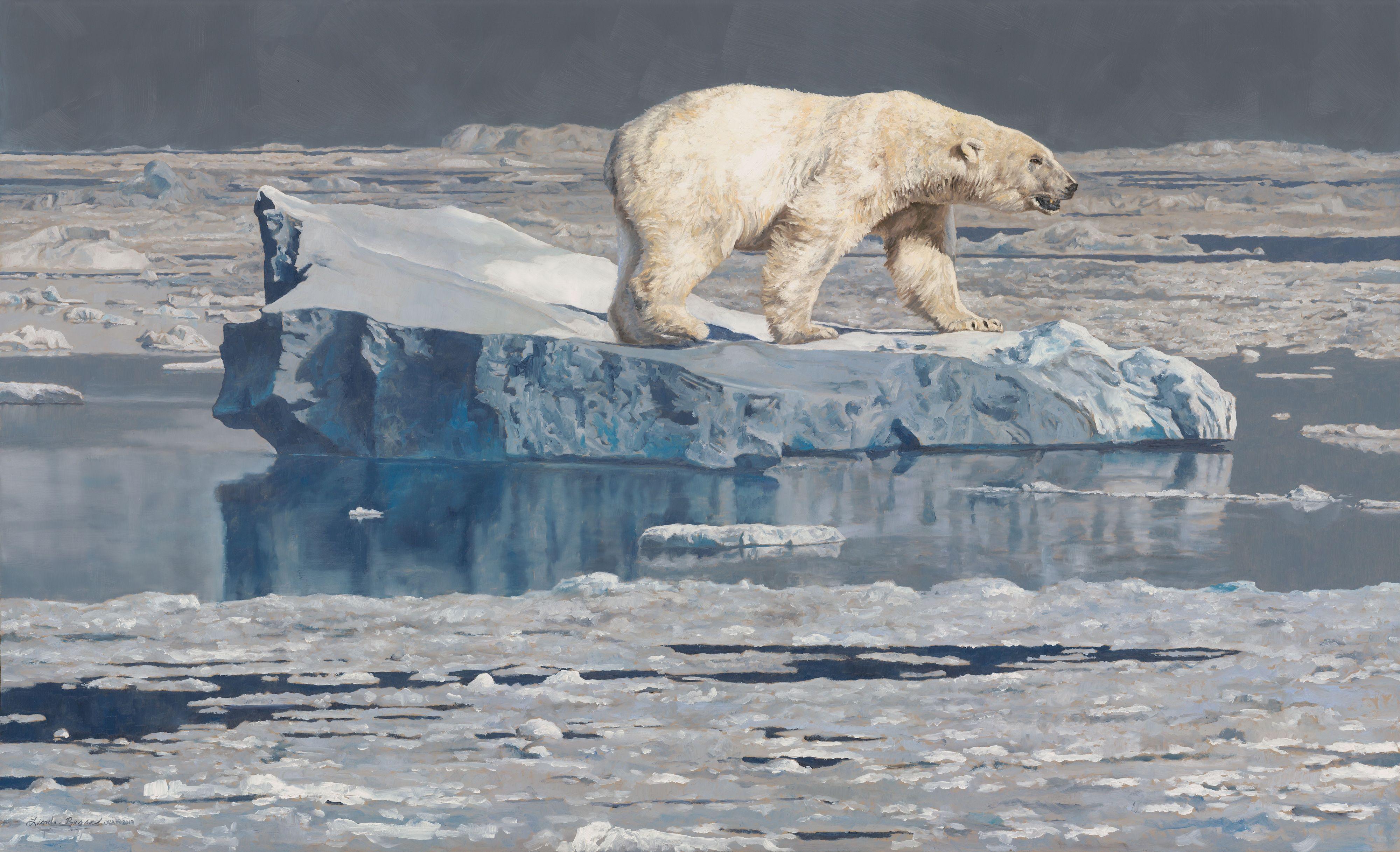 NOAPS Besse Ice Bear