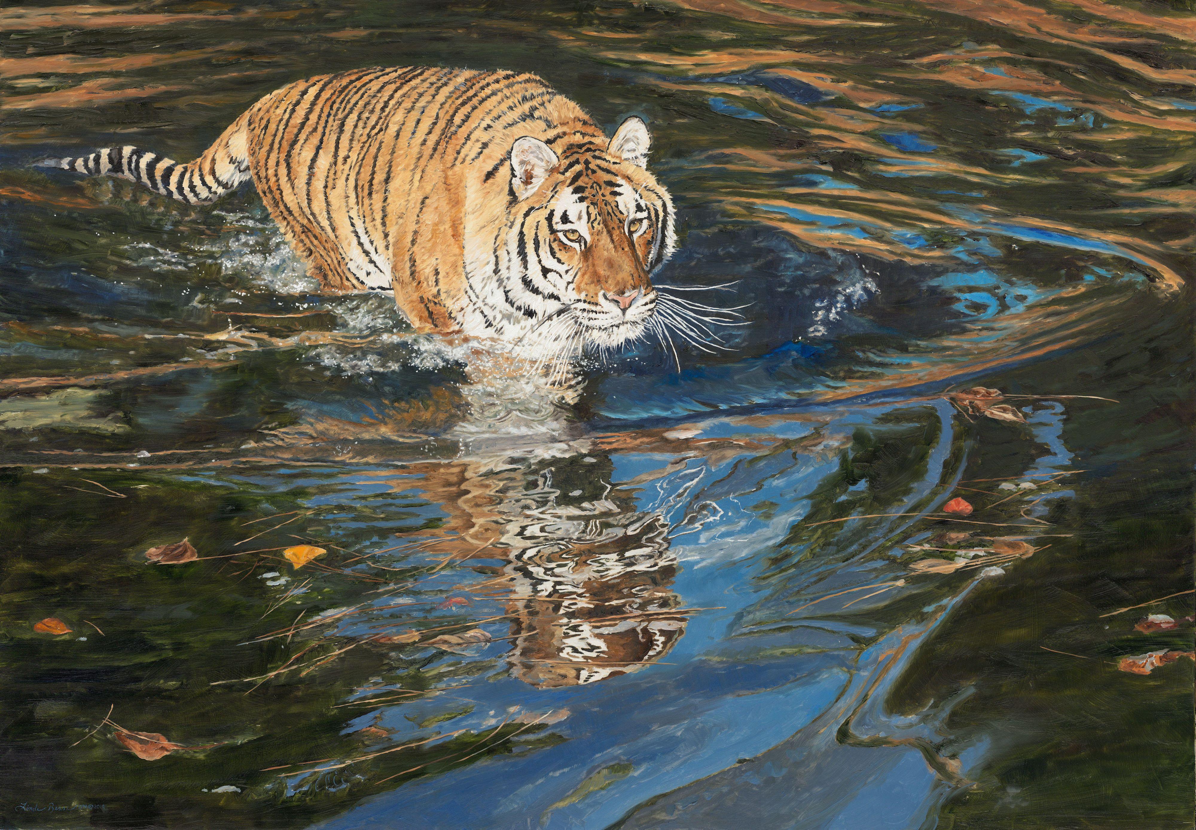 NOAPS Besse Stealth - Amur Tiger[27730]